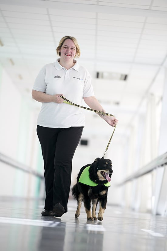 Pets in hospital QE Hospital Birmingham
